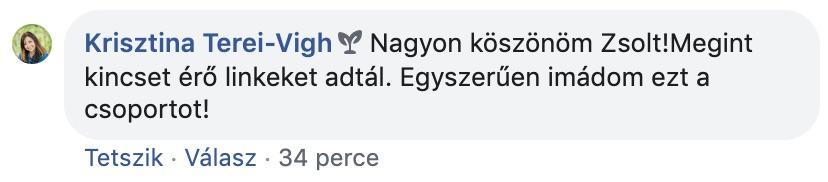 terei-vigh-krisztina
