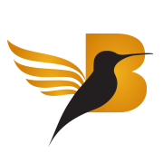 BrandBirds